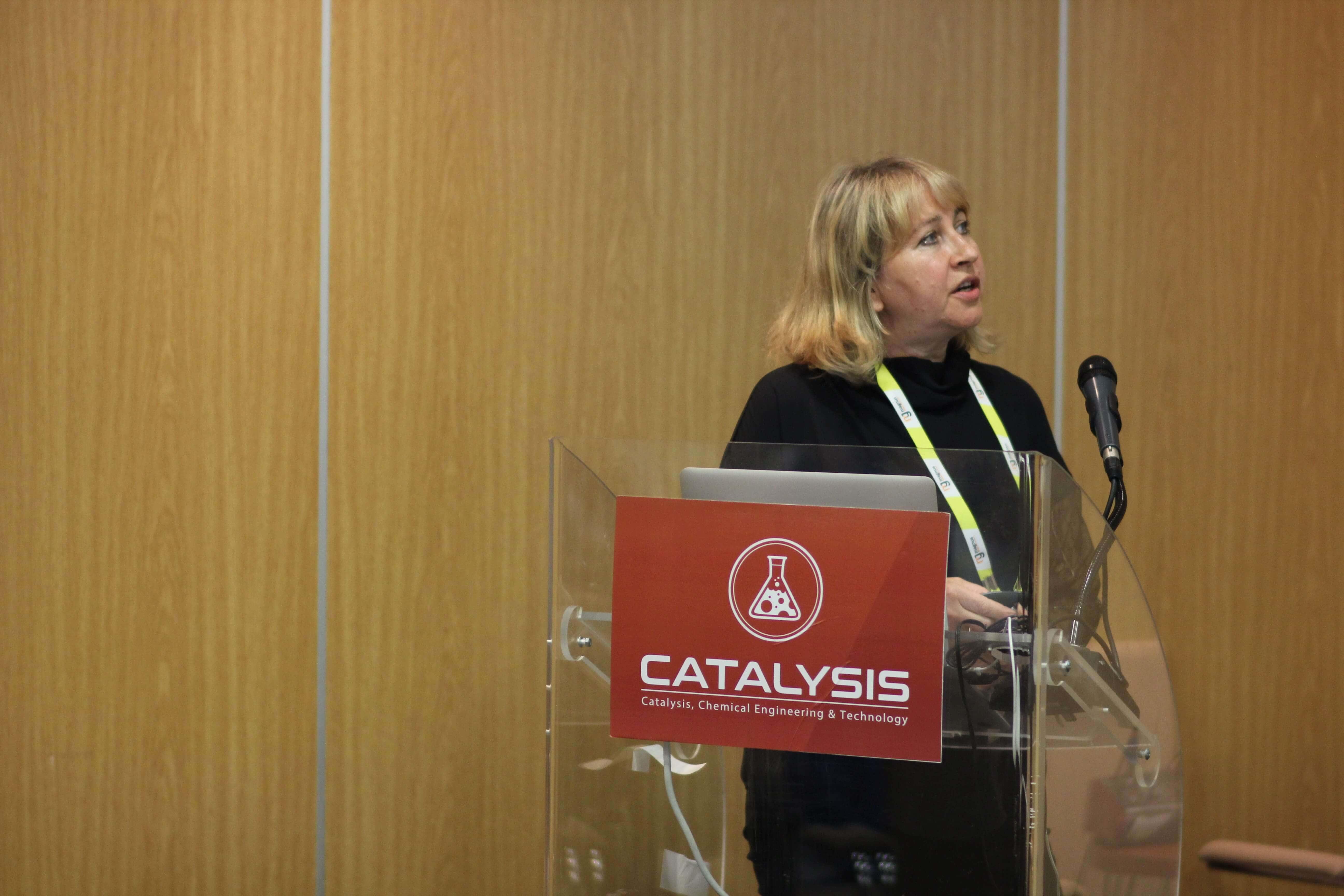 Tetiana Kulik, Chuiko Institute of Surface Chemistry NASU, Ukraine
