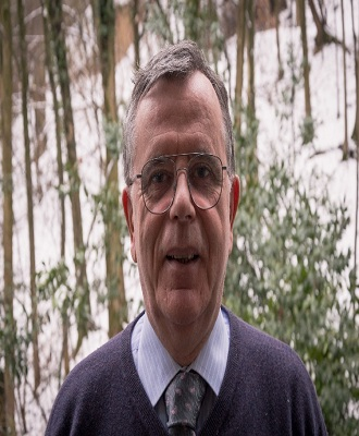 Committee Member for Catalysis Conferences - Angelo Vaccari